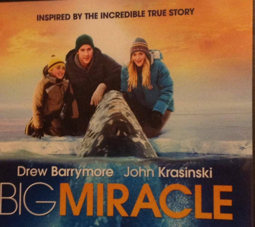 Movie+Poster+for+Big+Miracle
