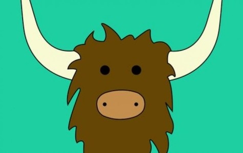 How Anonymous is Yik Yak?