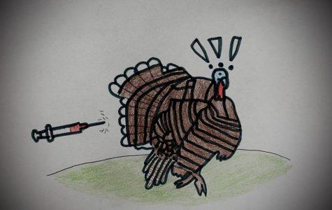 Turkey Troubles on the day of Turkeys