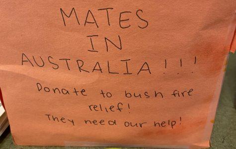 Australian Wildfires- Millions Destroyed
